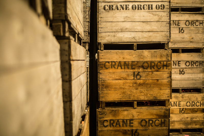 Crane's Wine and Cider - Fennville, MI